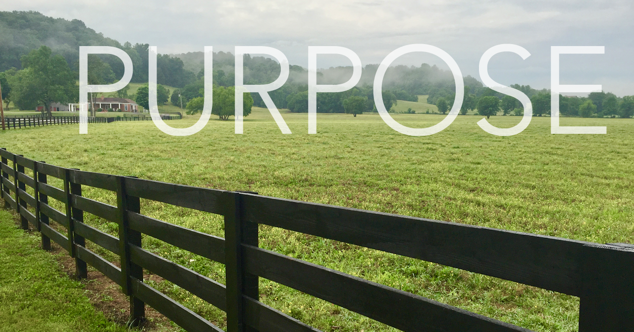 Walking in Purpose – Recognizing Your Platform